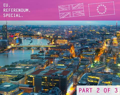EU Referendum Special